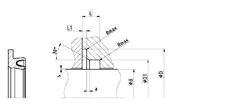 Уплотнение вала R19-F. Фланцевое уплотнение